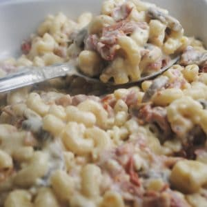 macaroni with salami, tomato and mushroom spooned into baking dish